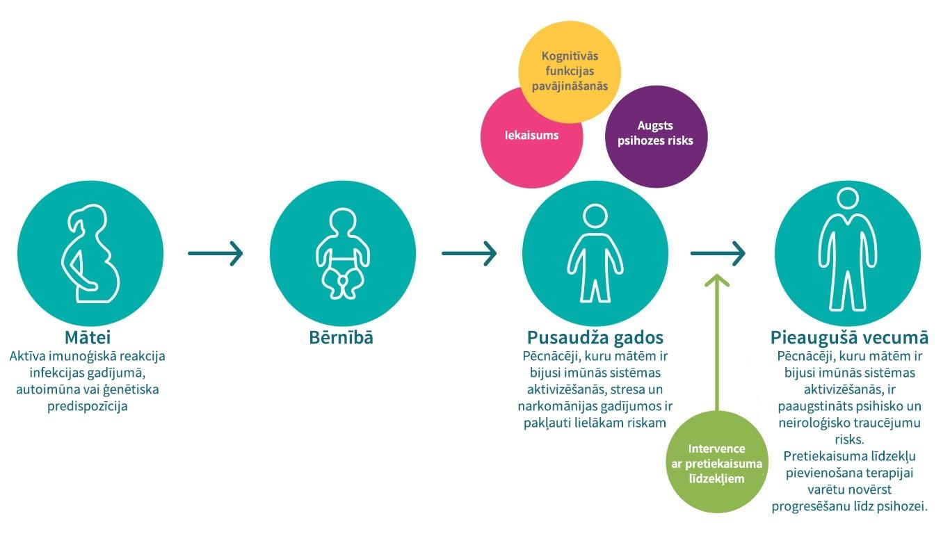 Mātes imūnās sistēmas aktivācija
