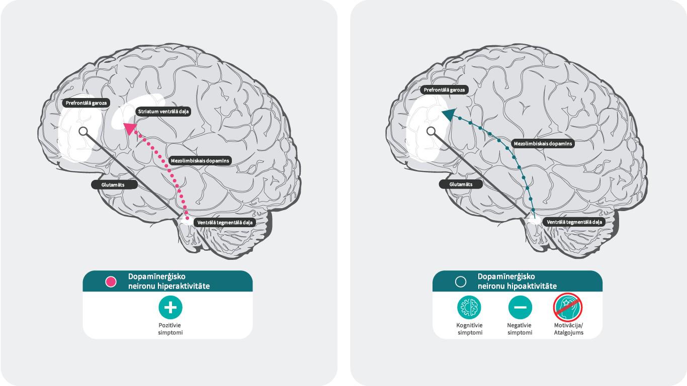 Dopamīns un šizofrēnija
